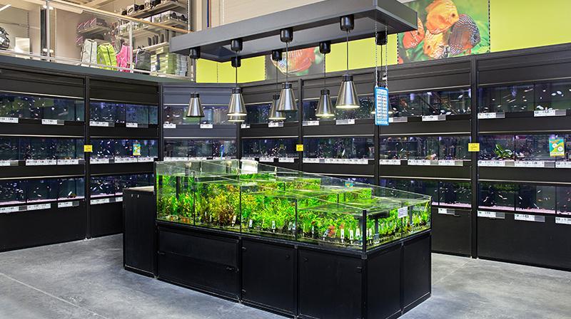 Aquarium- en vijverafdeling